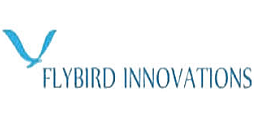 embedded training placement institute in Bangalore - placement company - Flybird
